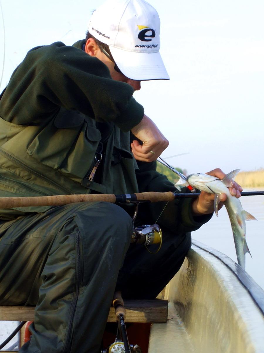 Balinok kedvenc játékai – második rész | HorgászMánia friss horgász hírek