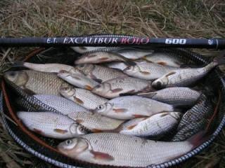 Télen is bolognai | HorgászMánia friss horgász hírek