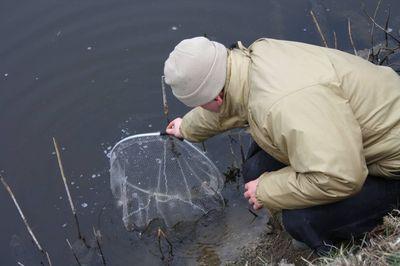 Spiccbottal a csatornán | HorgászMánia friss horgász hírek