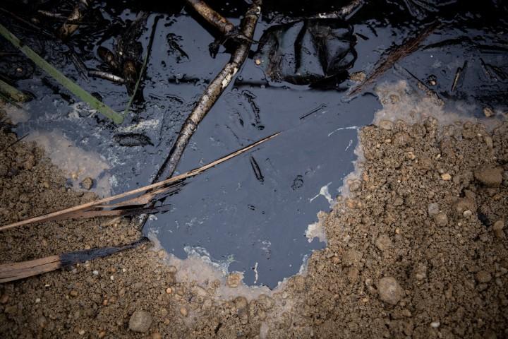 Több ezer liter olajszármazékot engedtek rá a szigetszentmiklósi úszólápra Fotó: Bődey János/Telex
