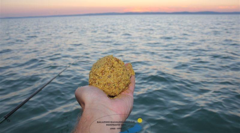 NYERJ ÉVES BALATONI HORGÁSZJEGYET!!! | HorgászMánia friss horgász hírek