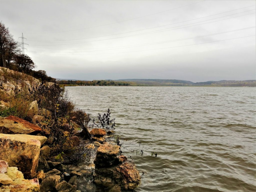 Sügérek és csukák között Wizarddal | HorgászMánia friss horgász hírek